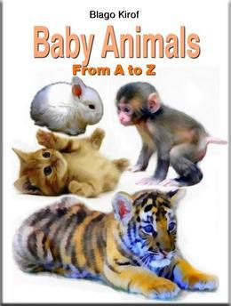 Baby Animals From A to Z
