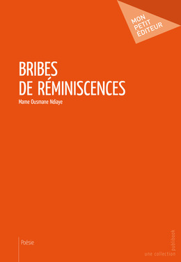 Bribes de réminiscences
