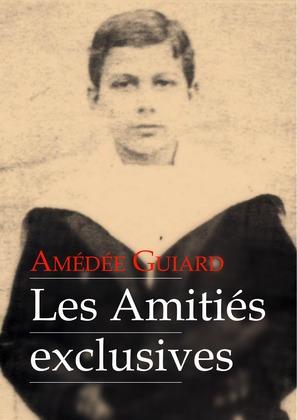 Les Amitiés exclusives (roman gay)