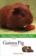 Guinea Pig: Your Happy Healthy Pet