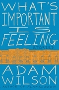 What's Important Is Feeling