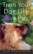 Train Your Dog Like a Pro