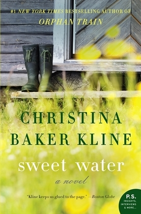 Sweet Water: A Novel
