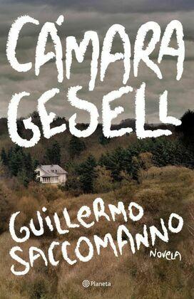 Cámara Gesell