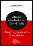 Afrique subsaharienne, Côte d'Ivoire : dans l'engrenage de la Françafrique