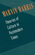 Theories of Culture in Postmodern Times