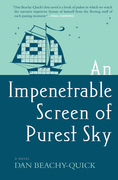 An Impenetrable Screen of Purest Sky: A Novel