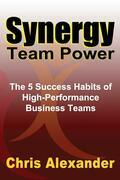 Synergy Team Power: The 5 Success Habits of High-Performance Business Teams