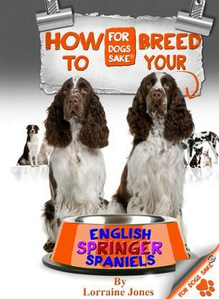How to Breed your English Springer Spaniel