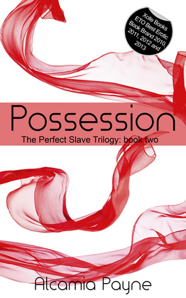 Possession: The Perfect Slave Trilogy - Book Two