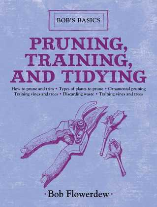 Pruning, Training, and Tidying