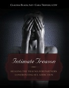 Intimate Treason: Healing the Trauma for Partners Confronting Sex Addiction