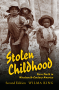 Stolen Childhood, Second Edition: Slave Youth in Nineteenth-Century America