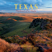 Texas: Portrait of a State