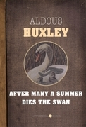 After Many A Summer Dies The Swan