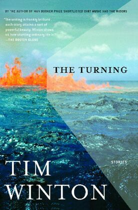 The Turning: Stories