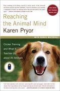 Reaching the Animal Mind