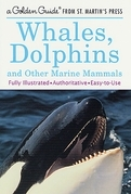 Whales, Dolphins, and Other Marine Mammals