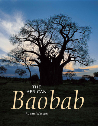 The African Baobab