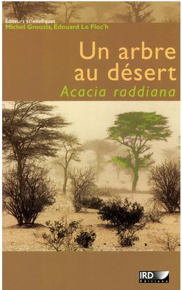 Un arbre au désert