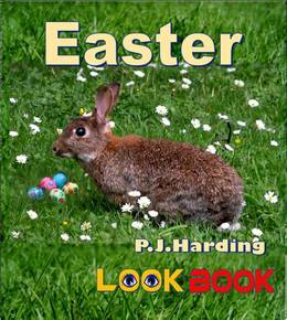 Easter: A LOOK BOOK Easy Reader