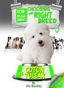 Choosing the Right Breed - Coton de Tulears