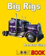 Big Rigs: A LOOK BOOK Easy Reader