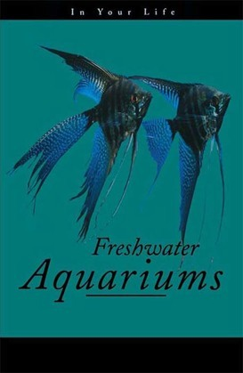 Freshwater Aquariums in Your Life