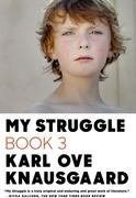 My Struggle: Book 3