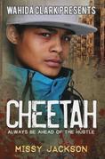 Cheetah: Always Be Ahead of The Hustle