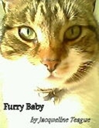Furry Baby