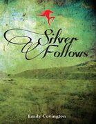 Silver Follows