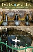 Holy Wells: A pilgrim's prayer companion and guide