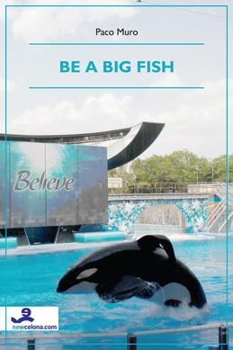 Be a big fish