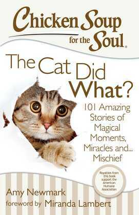 Chicken Soup for the Soul: The Cat Did What?