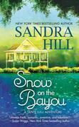 Snow on the Bayou: A Tante Lulu Adventure