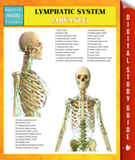 Lymphatic System (Advanced) Speedy Study Guides