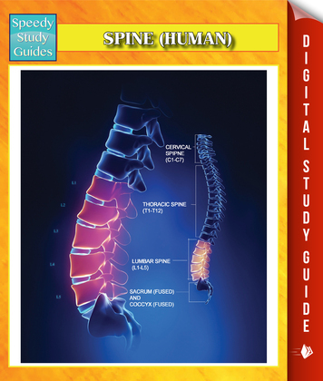 Spine (Human) Speedy Study Guides