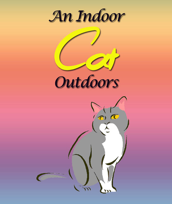 An Indoor Cat Outdoors