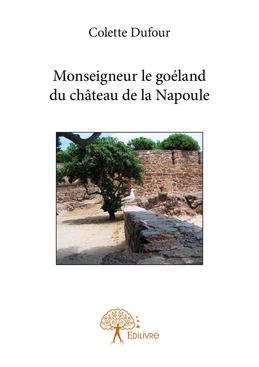 Monseigneur le goéland du château de la Napoule