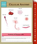 Cellular Anatomy: Speedy Study Guides