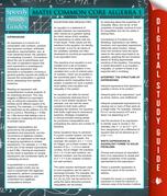 Math Common Core Algebra 1: Speedy Study Guides