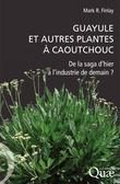 Guayule et autres plantes à caoutchouc