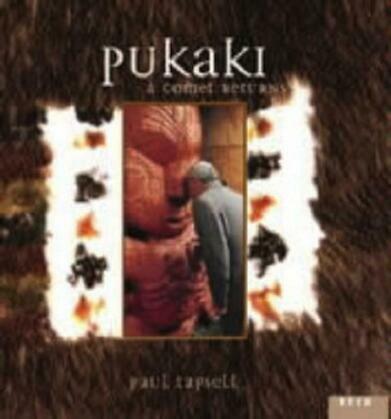 Pukaki - a comet returns