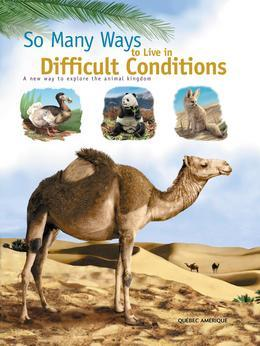 So Many Ways to Live in Difficult Conditions