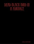Dead Black Bird In a Furnace