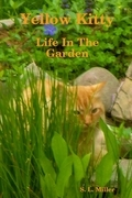 Yellow Kitty: Life In the Garden